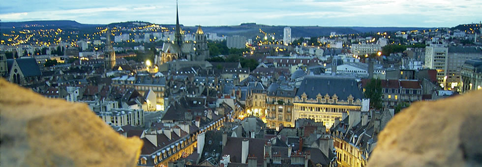 view of dijon at night